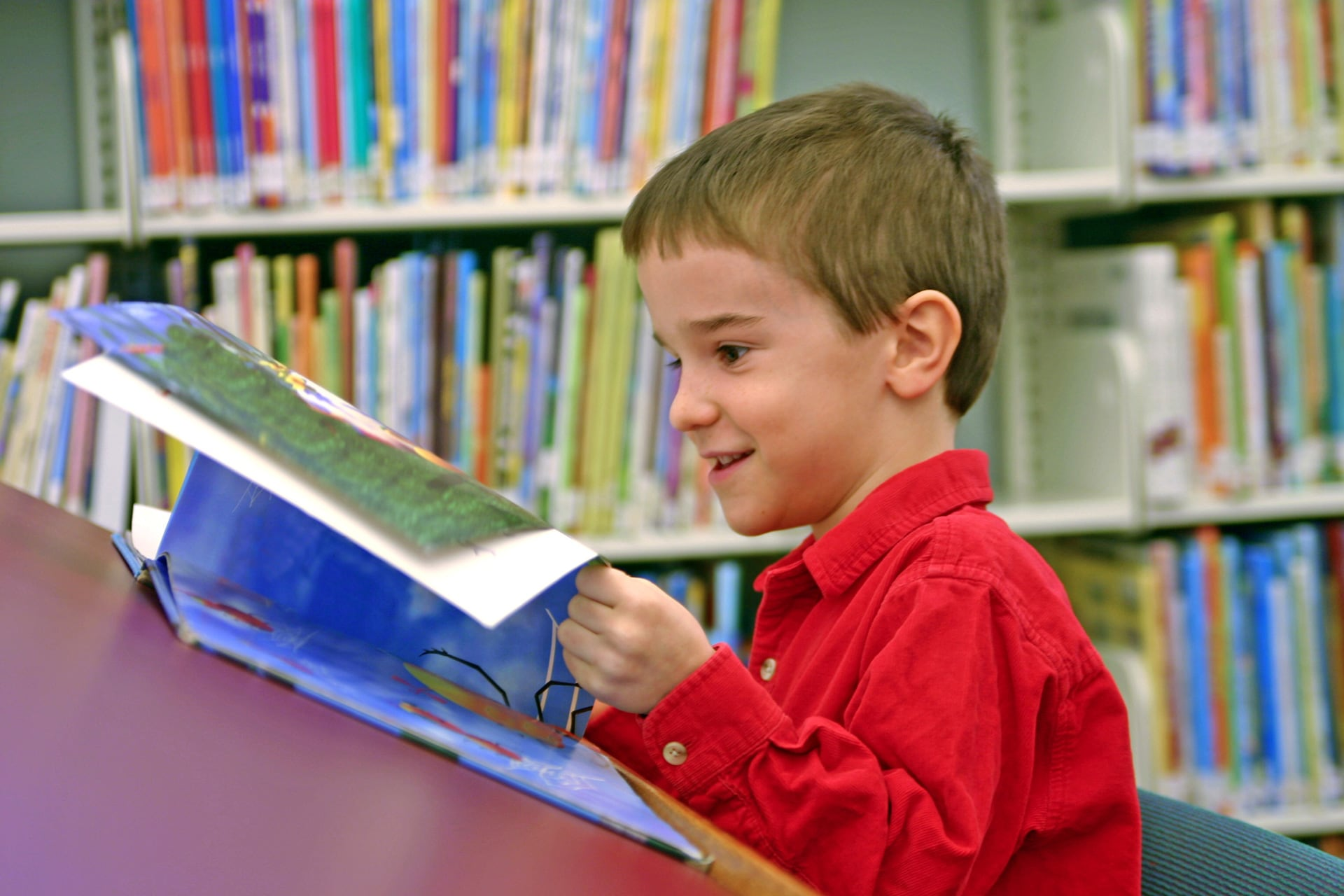 Early Literacy Efforts Help Young Brains Develop and Young Children Succeed in School